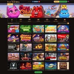 Партнерская программа казино play fortuna в кутаиси есть казино